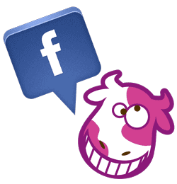 facebook-sts